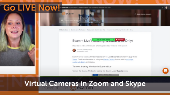 Virtual Cams Not Working with Zoom and Skype